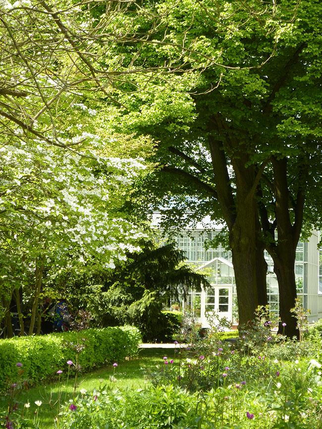botanischer-volkspark